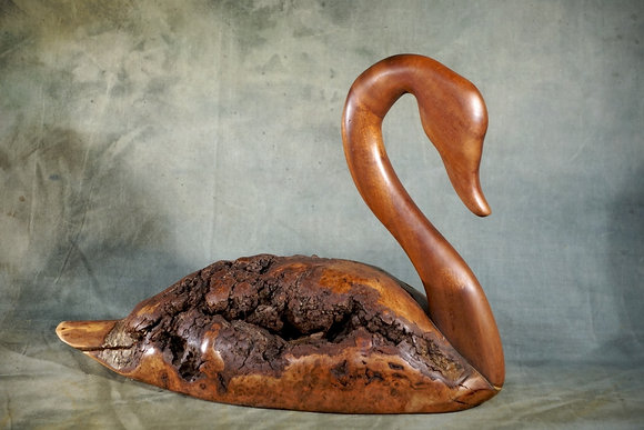 XL Cherry Burl Wood Swan Carving