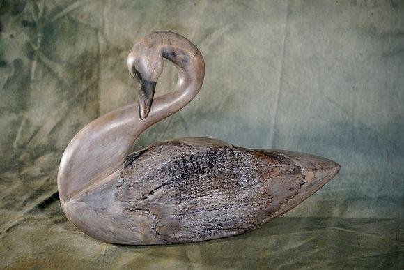 XL Preening Swan Decoy
