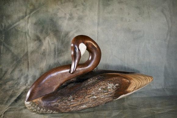 XL Preening Canada Goose Carving