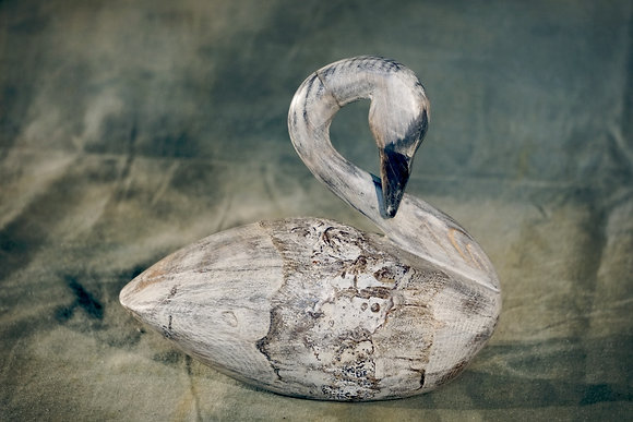 Preening Swan Decoy