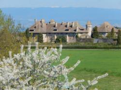 Château_de_Ripaille