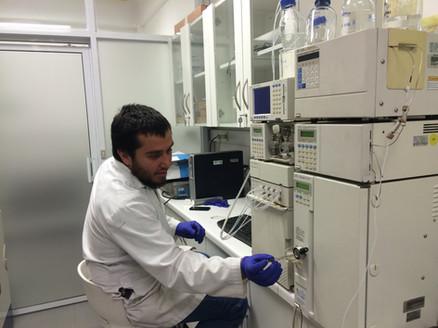 Análisis cromatográfico de extractos algales