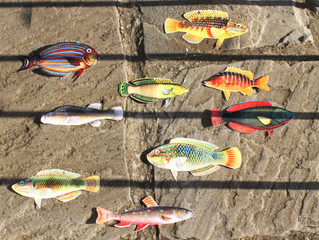 Onward, good fish...
