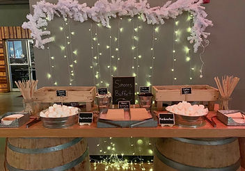 Rustic S'mores Buffet