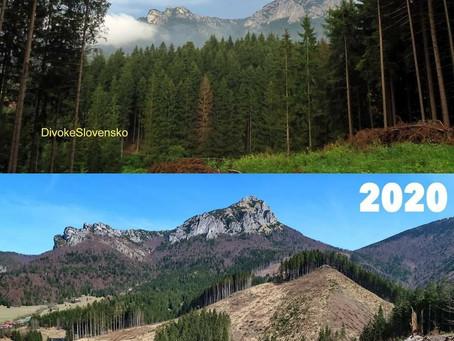 Malá Fatra 2016 vs. update 2020