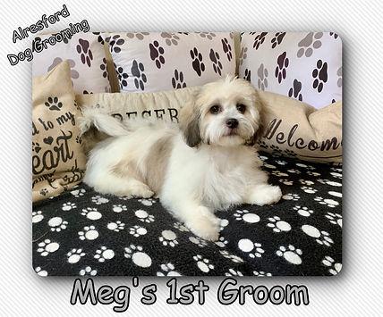 Meg's 1st Groom 2.10.19.jpg