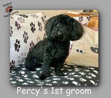 Percy Wilson's 1st groom 27.10.20.jpg