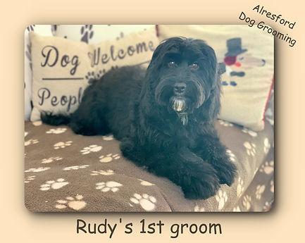 Rudy's 1st groom.jpg