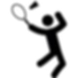 BadmintonIcon5.png