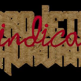 Projeto Aurora - Indicações #1