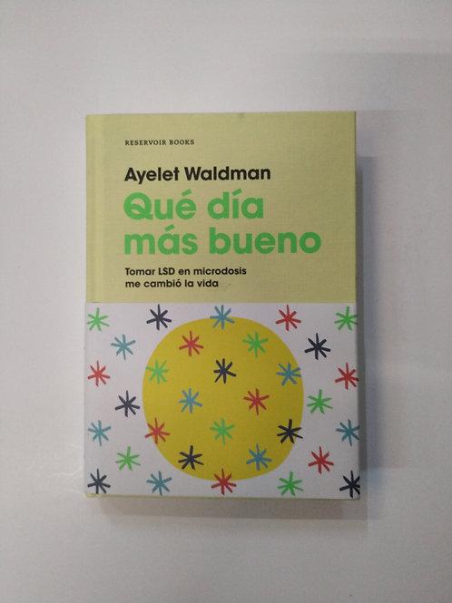 Qué día más bueno (Ayelet Waldman)