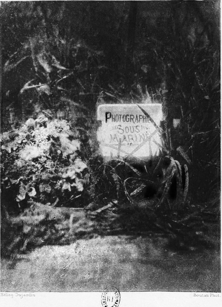 """Photographie Sous-Marine"" (1899) by Louis Boutan (1859 - 1934)"