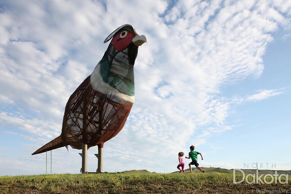 """Pheasants on the Prairie"" by Gary Greff   Credit North Dakota Tourism"