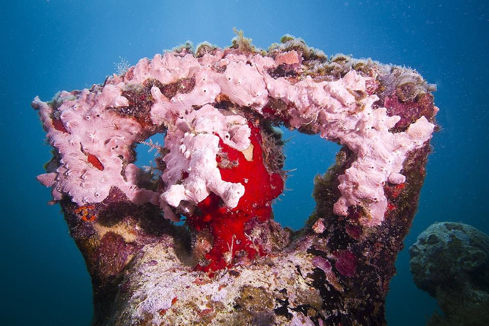 """""""Silent Evolution"""" in Mexico by Jason deCaires Taylor"""