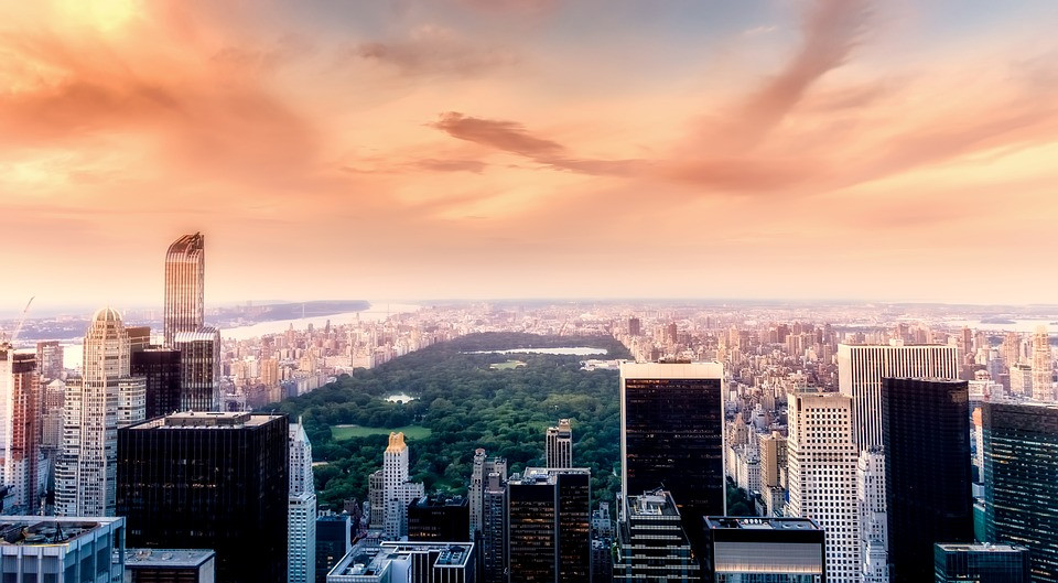 Excellence and Innovation: Interview with the Executive Director of the New York City Public Design Commission | NYC