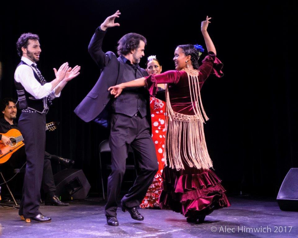 Flamenco Vivo Performance | Credit: Alec Himwich