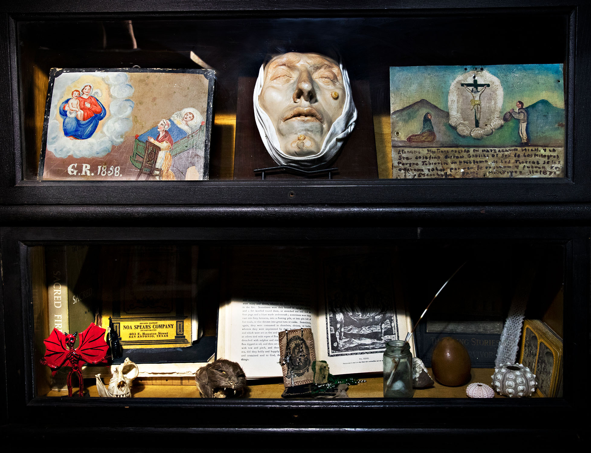 Beauty In Death Joanna Ebenstein On The Morbid Anatomy Project
