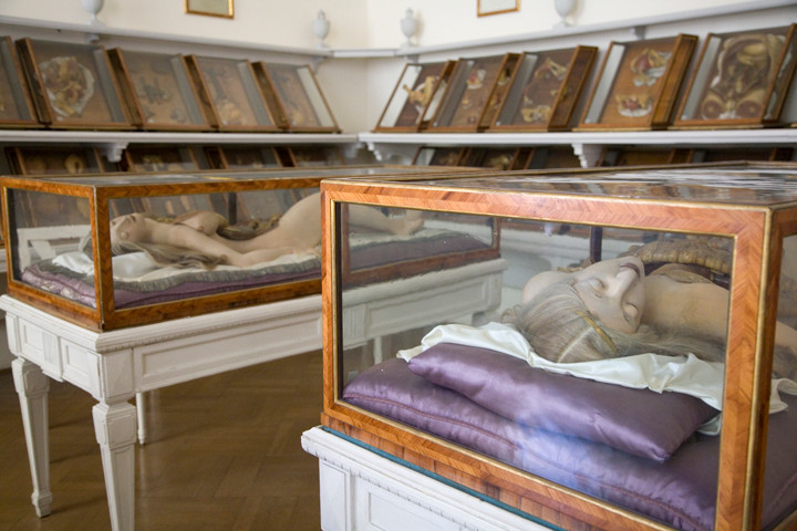 Beauty in Death: Joanna Ebenstein on the Morbid Anatomy Project