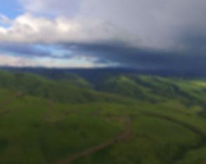 drone photo green field.jpg