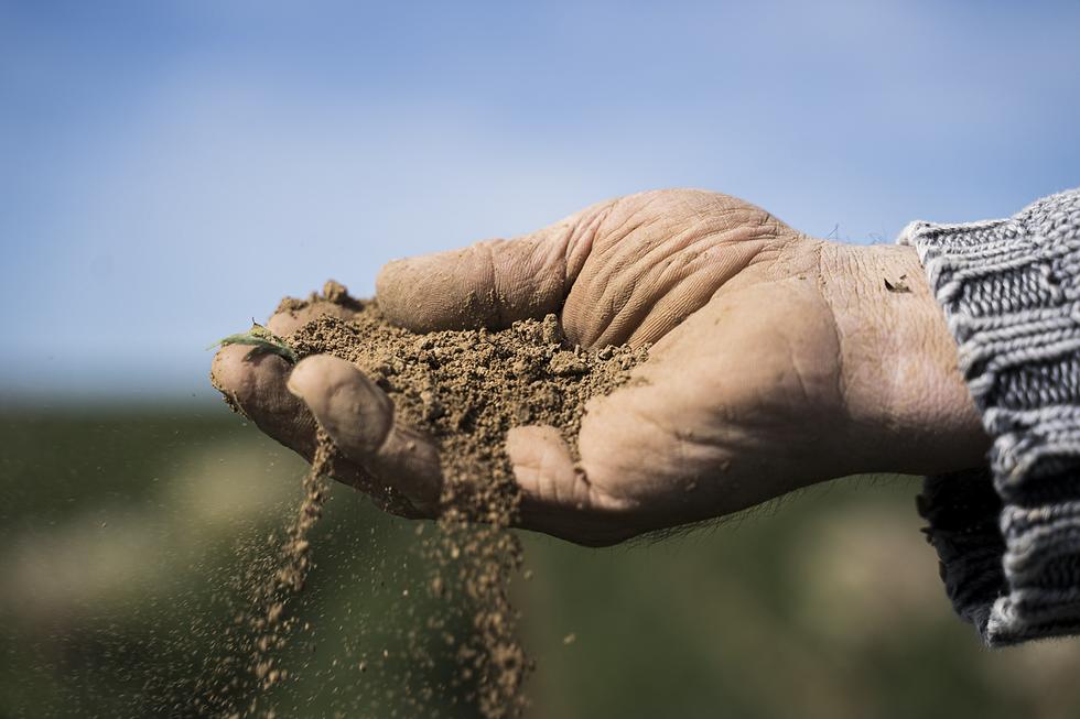 Agricultura biodinamica en colombia
