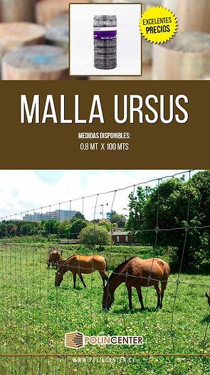 MALLA URSUS