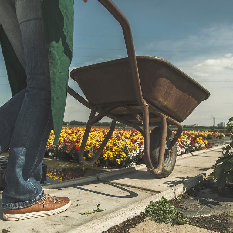 Fit am Arbeitsplatz: Neue Ideen für den Grünbereich