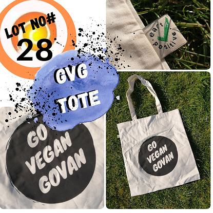 Lot 28 GVG tote.png