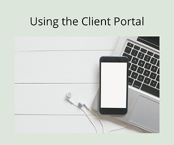 Using+the+client+portal.png