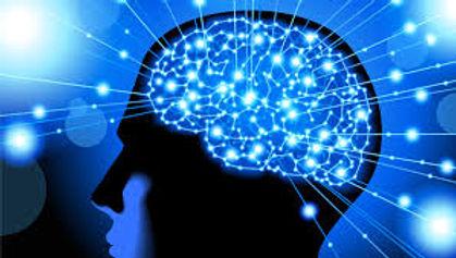 Brain C copy.jpg