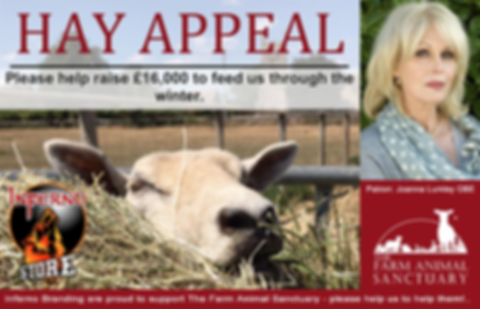 The Farm Animal Sanctuary Supported by Joanna Lumley OBE