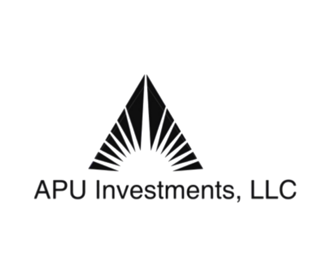APU Investments, LLc logo
