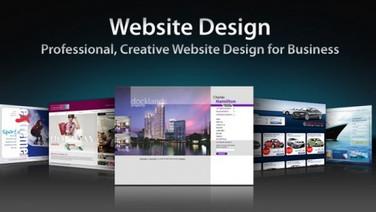 Website Design & Develompent