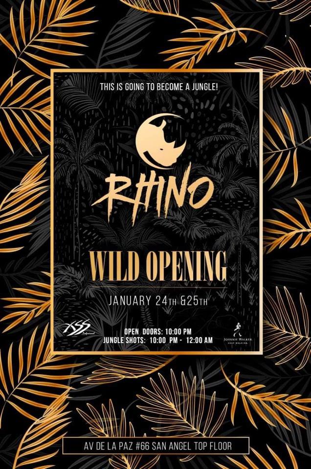rhino 6.jpg
