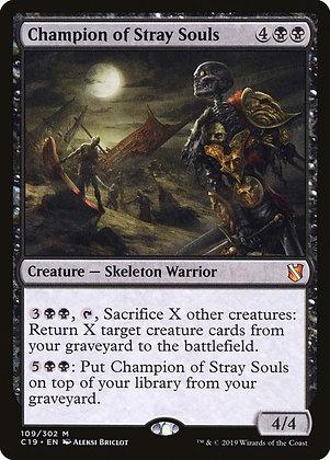 Champion of Stray Souls (C19)
