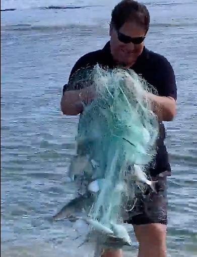 netfishing.jpg