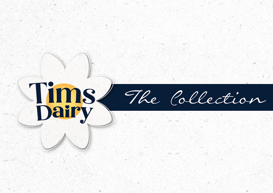 The-Collection_Logo.jpg
