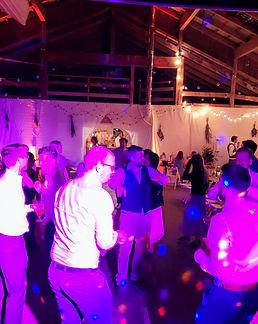 DIGA Baumschule Hochzeit DJ.jpg
