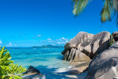 Bleu Seychelle