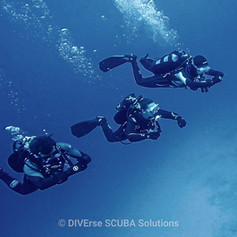 Scuba ivers in formation