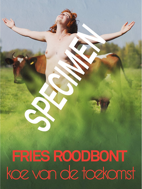 Poster Fries roodbonte koe