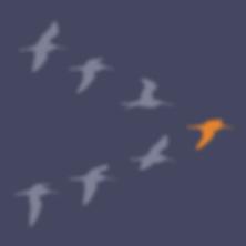 Vogels.png