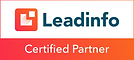Leadinfo voor Wix