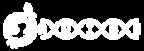 Logo-Arise-wit.png