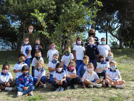 Cannons Creek adopts a tree