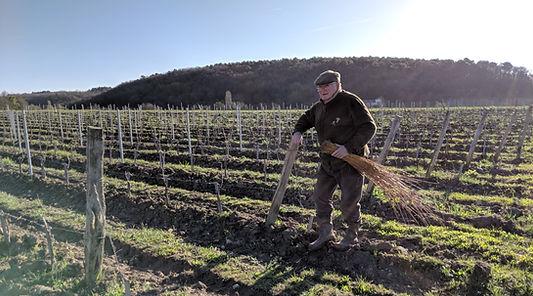 Créateur du Domaine Hérault, plier les baguettes à l'osier