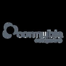 Connubia-Calligaris-logo.png