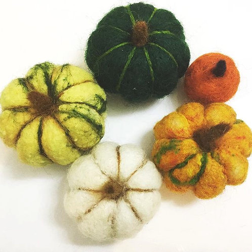 Gourds - Set