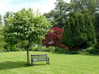 vivat-shipton-court-garden-1-077.jpg