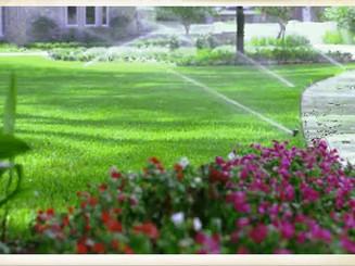 photo_irrigation3.jpg