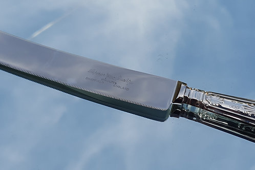 Ornate Silver & Stainless-Steel Cake Knife